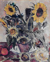 DRIES Tournesols
