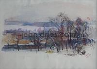 DRIES L-etang-de-Royaumont-en-hiver.jpg