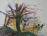 DRIES Lourmarin-etude-d-arbre.jpg