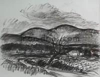 DRIES Plateau-d-Albion