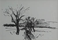 DRIES Le-Contadour-arbre-mort